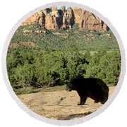 Black Bear In Utah Round Beach Towel