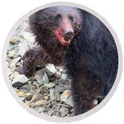 Black Bear Bloodied Lunch Round Beach Towel