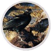 Black Bird With Yellow Eyes Round Beach Towel