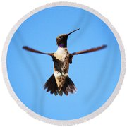 Black-chinned Hummingbird Flying Round Beach Towel