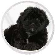 Black Cockerpoo Puppy Round Beach Towel