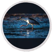 Black-crowned Night Heron Round Beach Towel