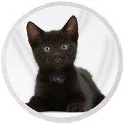 Black Kitten Round Beach Towel