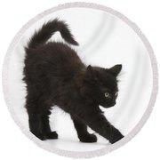 Black Kitten Stretching Round Beach Towel