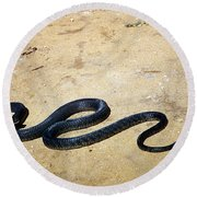 Black Mamba Round Beach Towel by Elizabeth Kingsley