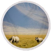 Black Rhinos Walking Across The Crater Round Beach Towel