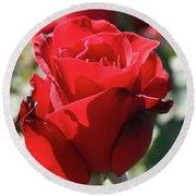 Black Rose Red Round Beach Towel
