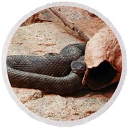 Black Snake Round Beach Towel