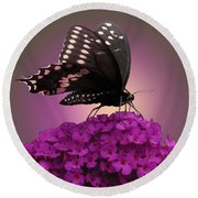 Black Swallowtail 1 Round Beach Towel