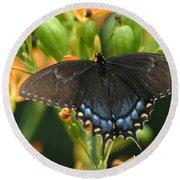 Black Swallowtail Round Beach Towel