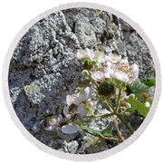 Blackberry On The Rock Square Format Round Beach Towel