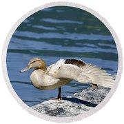 Blonde Duck Round Beach Towel