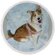 Blue - Siberian Husky Dog Painting Round Beach Towel