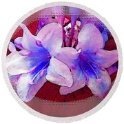 Blue And Red Weigela Window Round Beach Towel