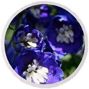 Blue Blossoms Round Beach Towel