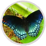 Blue Butterfly I Round Beach Towel