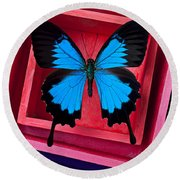 Blue Butterfly In Pink Box Round Beach Towel