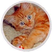 Blue-eyed Kitty Round Beach Towel
