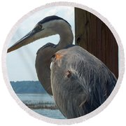 Blue Heron 2 Round Beach Towel