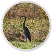 Blue Heron At Valley Forge Round Beach Towel