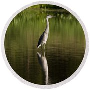 Blue Heron Reflection Round Beach Towel