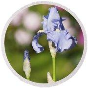 Blue Iris Close Up - Dsc03741 Round Beach Towel