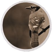 Blue Jay Round Beach Towel