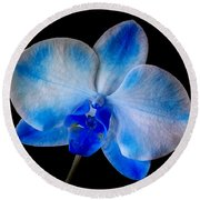 Blue Orchid Bloom Round Beach Towel