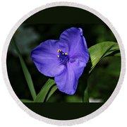 Blue Wildflower 6 Round Beach Towel