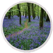Bluebell Wood, Near Boyle, Co Round Beach Towel