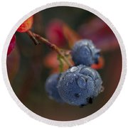 Blueberry Dewdrops Round Beach Towel
