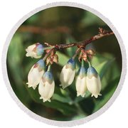 Blueberry Flowers Round Beach Towel