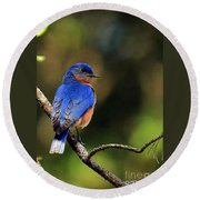 Bluebird 4 Round Beach Towel