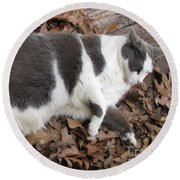 Boojer In Leaves Round Beach Towel