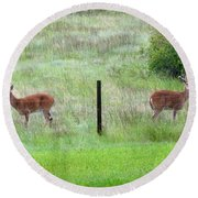 Bookend Twin Bucks Round Beach Towel