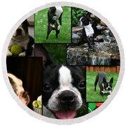 Boston Terrier Photo Collage Round Beach Towel
