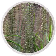 Bottle Brush Grass Round Beach Towel