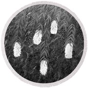Bottlebrush Plant B W Round Beach Towel