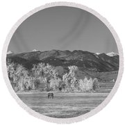 Boulder County Colorado Front Range Panorama With Horses Bw Round Beach Towel