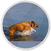 Boxer Playing In Water Round Beach Towel