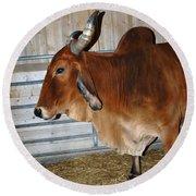 brahma Cow Round Beach Towel