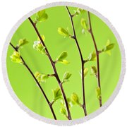 Branches With Green Spring Leaves Round Beach Towel