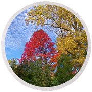 Bright Autumn Color Round Beach Towel