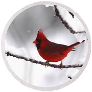Bright In The Snow - Cardinal Round Beach Towel