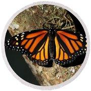Bright Orange Monarch Butterfly Round Beach Towel
