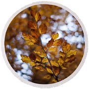 Brilliant Leaves Round Beach Towel