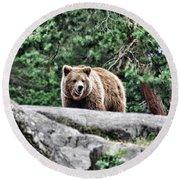 Brown Bear 209 Round Beach Towel