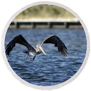 Brown Pelican - Low Flyer Round Beach Towel