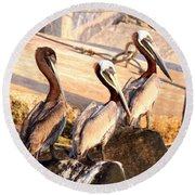 Brown Pelican - Holding Things Together Round Beach Towel