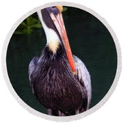 Brown Pelican Islamorada Round Beach Towel